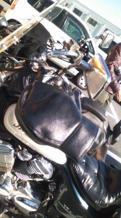 PA0_0011_20101205232948.jpg