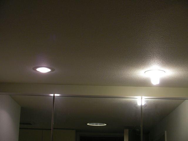 レフランプと電球型蛍光灯の比較