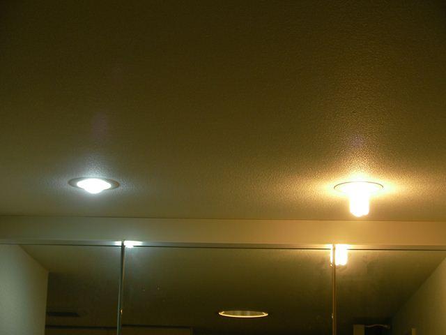 電球型LEDと電球型蛍光灯の比較