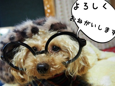 IMG_5326.jpg
