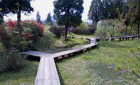 花公園遊歩道