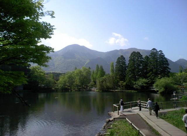 金鱗湖 ナオコ撮影