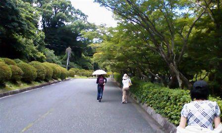 門から庭園までの道