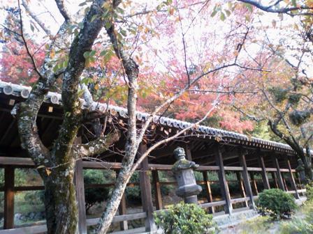 吉備津神社 廻廊7