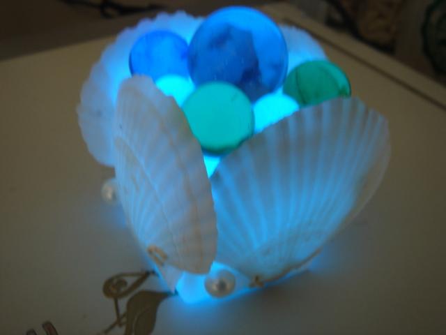 シェル ラグーンライト 青の光で