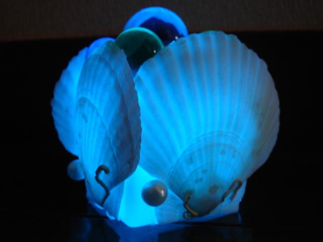 シェル ラグーンライト 暗闇だとこんなんです。青