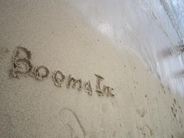 I LOVE BOOMA