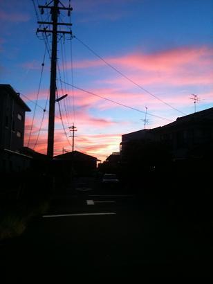 綺麗な夕日②