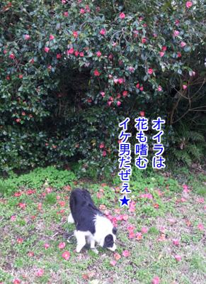 20130320_153815.jpg