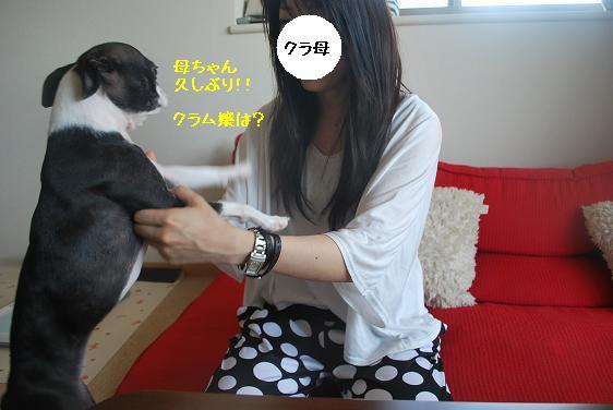 20110716DSC_2177.jpg