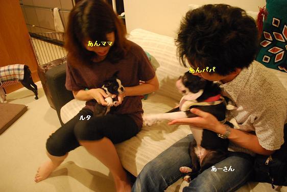 20110819DSC_3196.jpg