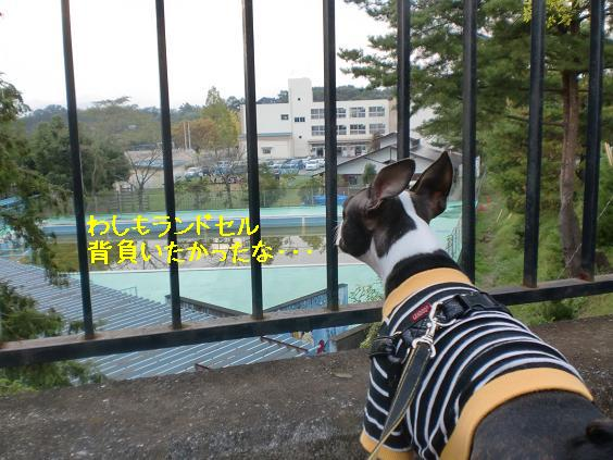 20111027CIMG6943.jpg