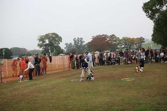 20111109IMG_7261.jpg