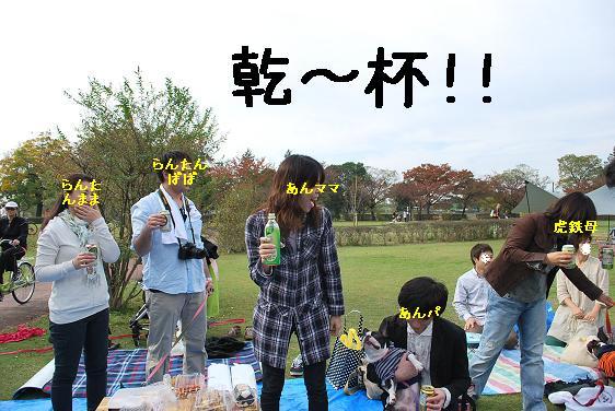 20111114DSC_0221.jpg