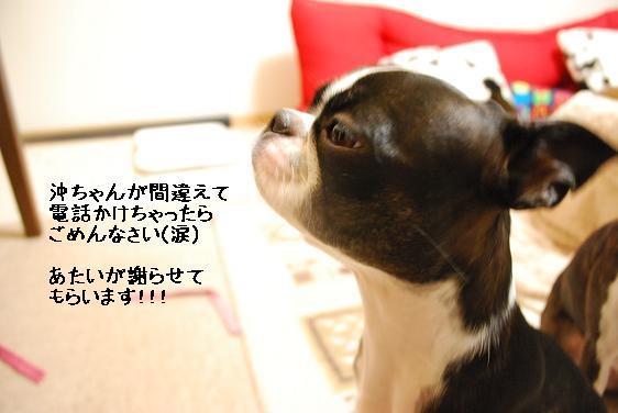 20111213DSC_1229.jpg