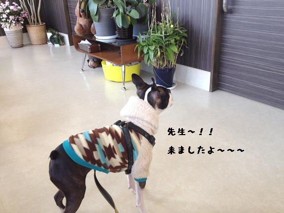 201201095__.jpg
