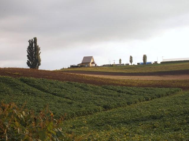 P9135401.jpg