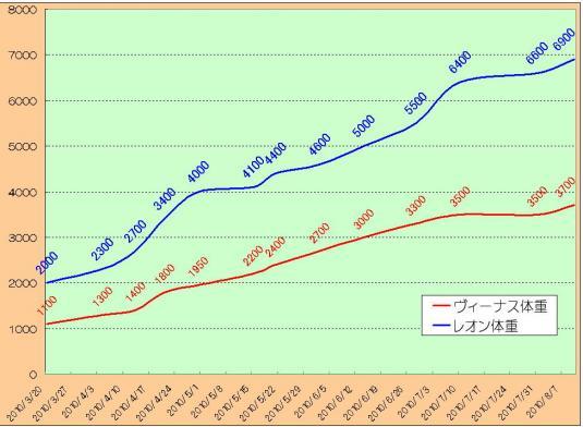 graph0810.jpg