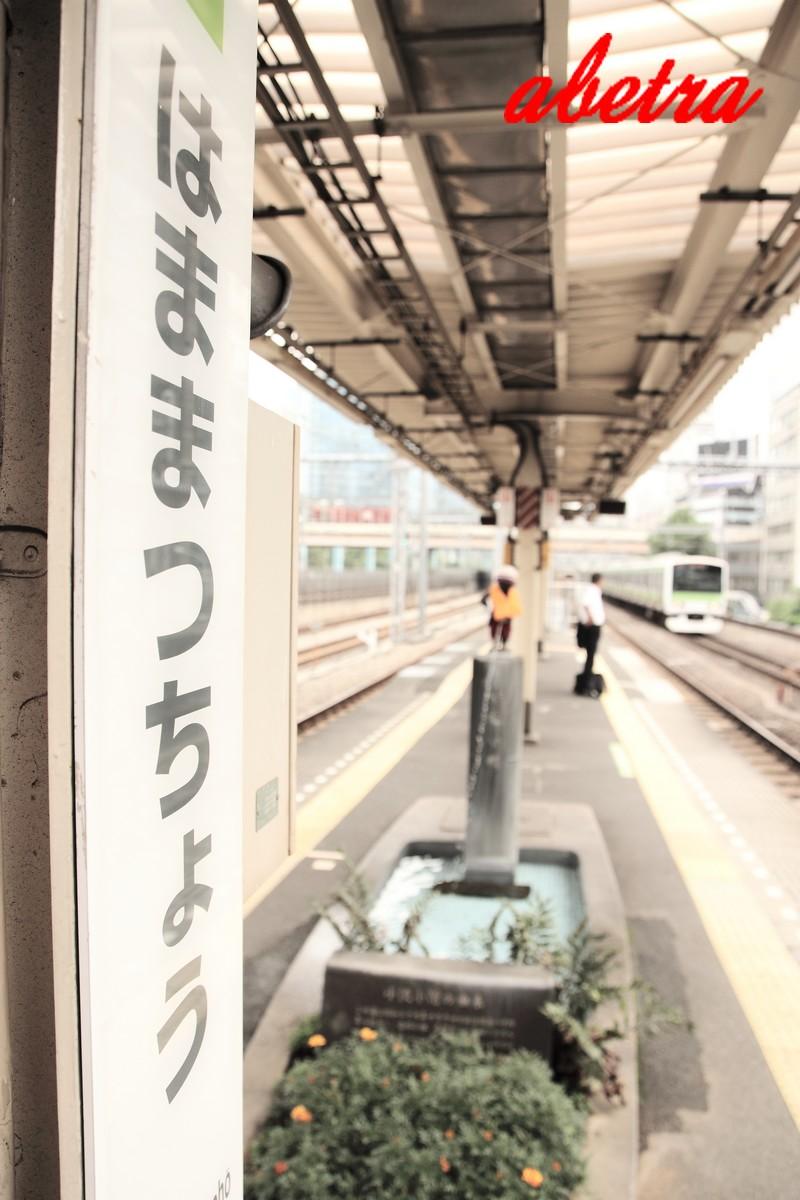 Yamanote Line ~Hamamatsutyo~