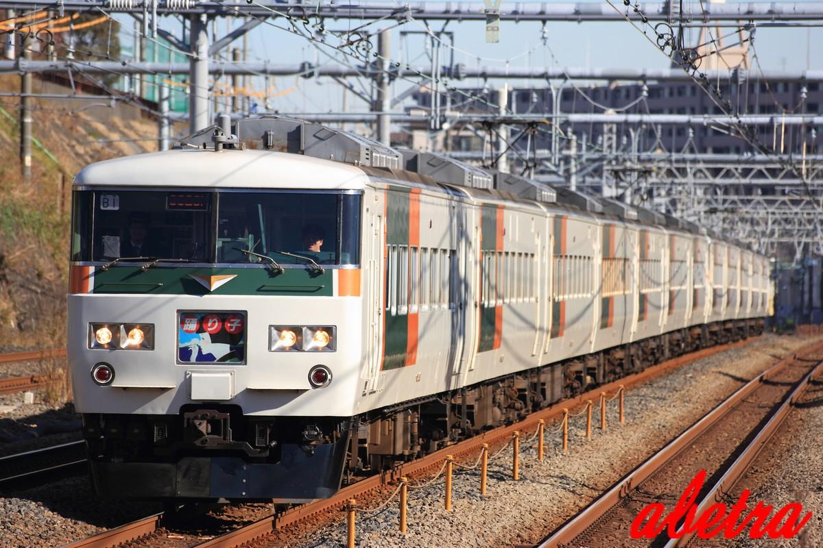 JR東日本 185系