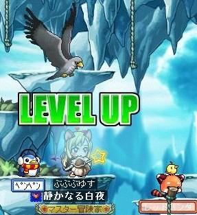 Maple100227_095044.jpg