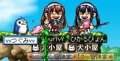 Maple100606_100015.jpg
