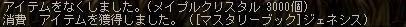 Maple100606_163732.jpg