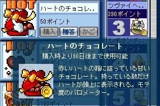 Maple110209_144609.jpg