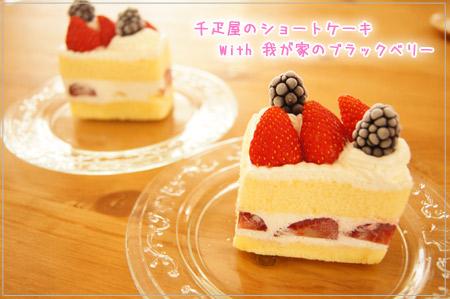 お祝いショートケーキ.jpg