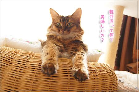 いざ、軽井沢へ