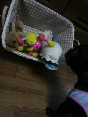 新しいおもちゃ箱