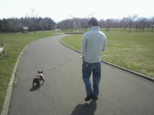 パパと散歩は安心だね
