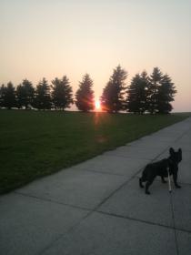 夕日が似合っちゃうね