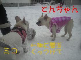 ミコ、服にカワイイ装飾してるね。