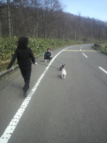 散歩にも行けたよ♪