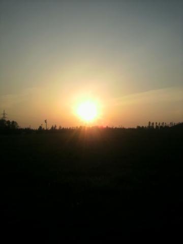 キレイな夕日