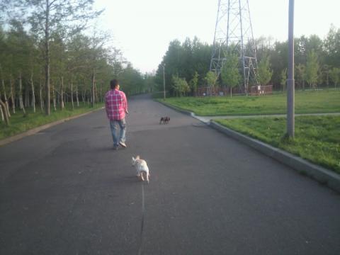 先週のモエレ散歩