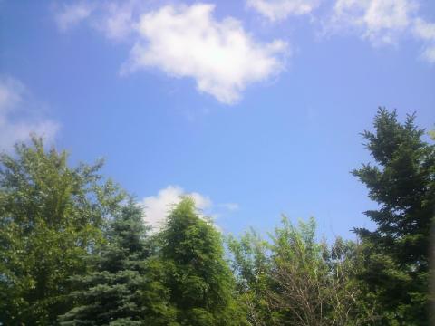 青空だね。