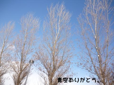 お日さま、楽しい時間をありがとう。