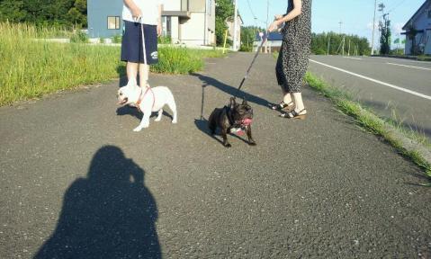 ジジババとお散歩
