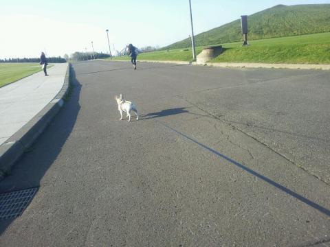 モエレひとり散歩だーっ!