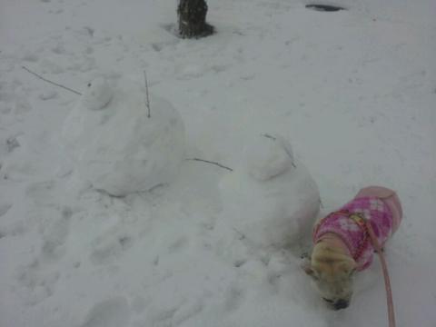 雪だるま発見