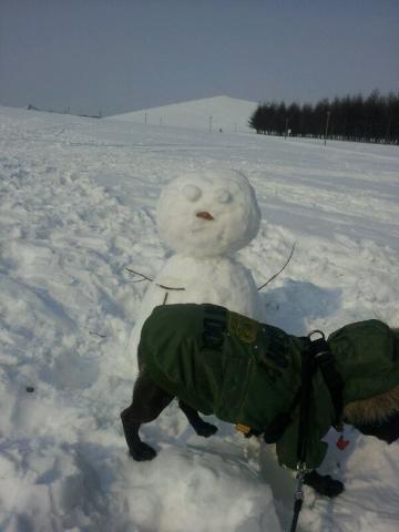 雪だるま…スルー