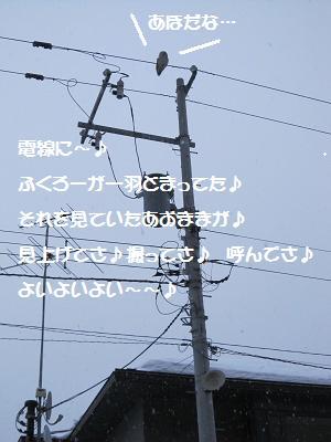 20100308 012