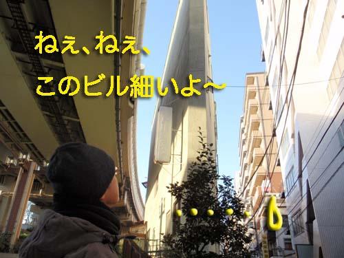 P1097803.jpg