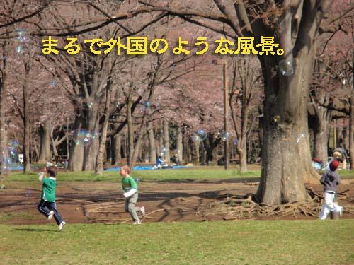 P3274642.jpg
