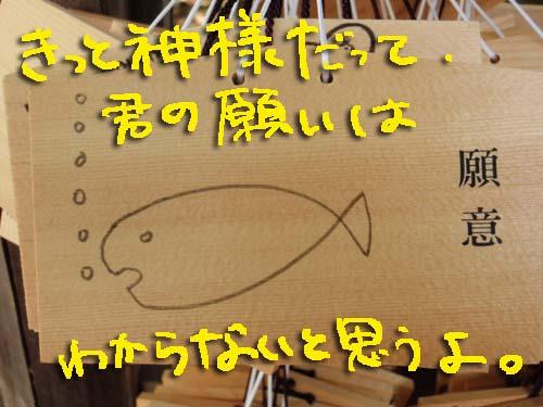 P7195909.jpg