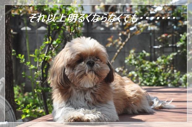 DSC_0581_01.jpg