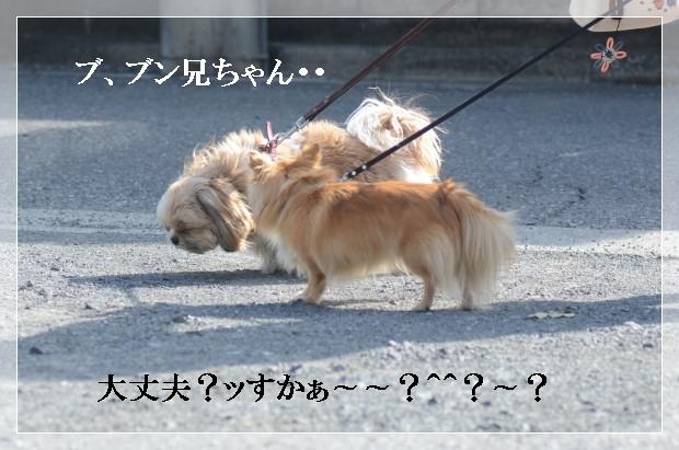 DSC_1062_01.jpg