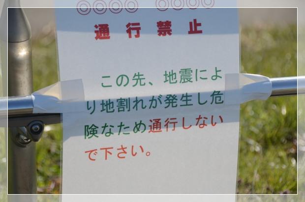 DSC_3281_01.jpg